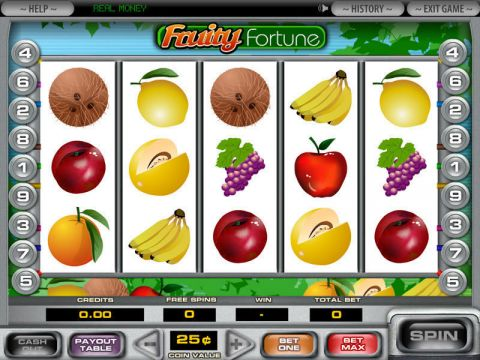 5-Reel Fruity Fortune Fun Slots by DGS with 5 Reel and 9 Line