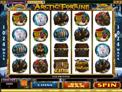 Arctic Fortune Fun Slots by Microgaming with 5 Reel and 1024 Way