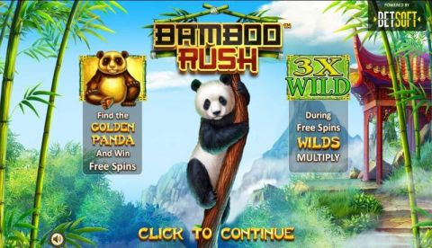 Bamboo Rush Fun Slots by BetSoft with 5 Reel and 40 Line