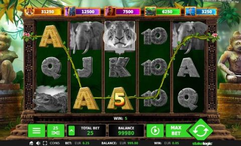 Big 5 Jungle Jackpot Fun Slots by StakeLogic with 5 Reel and 25 Line