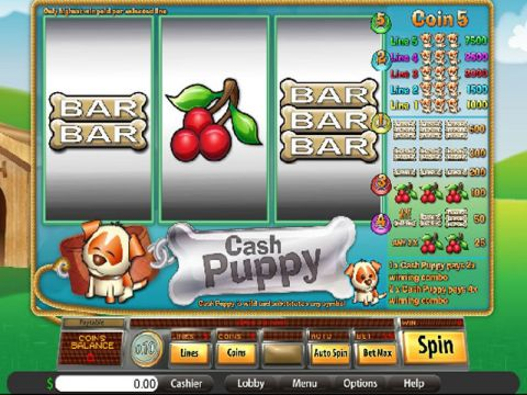 Cash Puppy Fun Slots by Saucify with 3 Reel and 5 Line