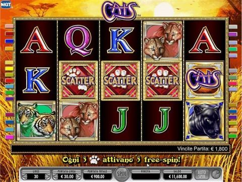 Cats Fun Slots by IGT with 5 Reel and 30 Line