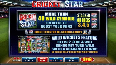 Cricket Star Fun Slots by Microgaming with 5 Reel and 243 Line