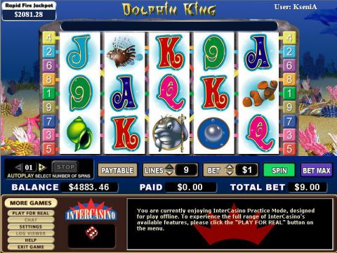 Dolphin King Fun Slots by CryptoLogic with 5 Reel and 9 Line