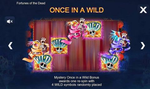 Fortunes of the Dead Fun Slots by Side City with 5 Reel and 50 Line