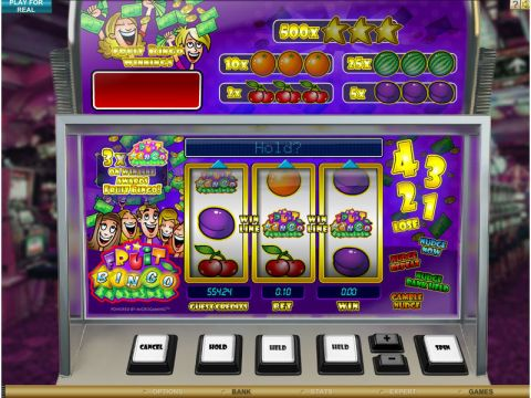 Fruit Bingo Fun Slots by Microgaming with 3 Reel and 1 Line