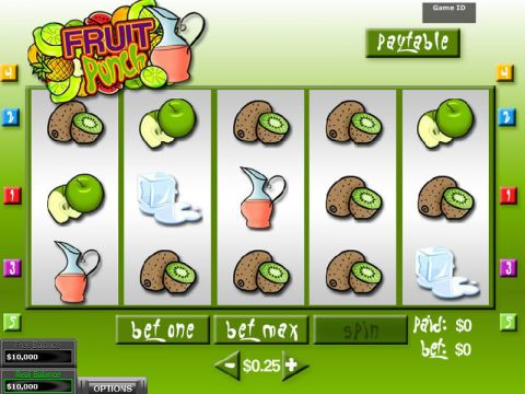 Fruit Punch Fun Slots by DGS with 5 Reel and 5 Line