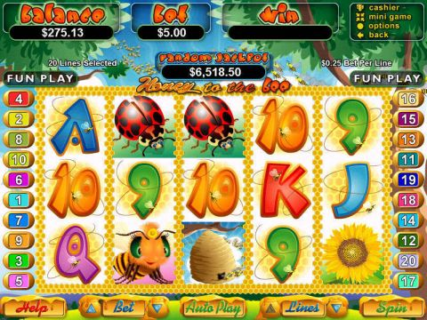 Honey to the Bee Fun Slots by RTG with 5 Reel and 20 Line