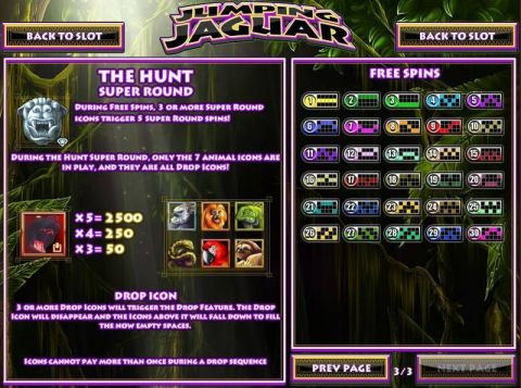 Jumping Jaguar Fun Slots by Rival with 5 Reel and 30 Line