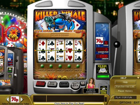 Killer Whale Poker Fun Slots by Boss Media with 5 Reel and 1 Line