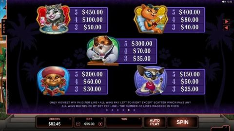 Kitty Cabana Fun Slots by Microgaming with 5 Reel and 25 Line