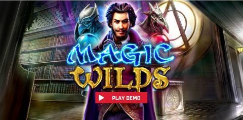 Magic Wilds Fun Slots by Red Rake Gaming with 5 Reel and 100 Line