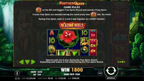 Panther Queen Fun Slots by PartyGaming with 5 Reel and 25 Line