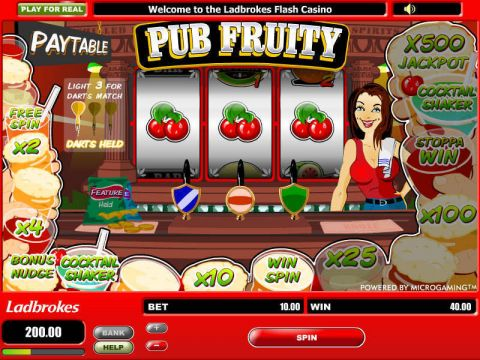 Pub Fruity Fun Slots by Microgaming with 3 Reel and 1 Line
