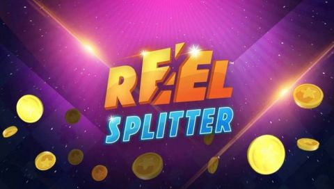 Reel Splitter Fun Slots by Microgaming with 4 Reel and 243 Line