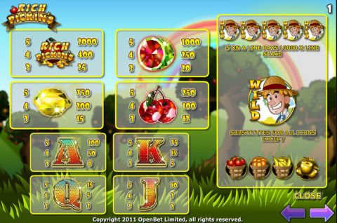 Rich Pickins Fun Slots by Electracade with 5 Reel and 20 Line