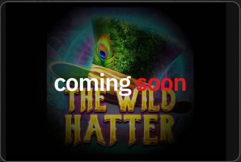 The Wild Hatter Fun Slots by Red Tiger Gaming with 5 Reel and 30 Line