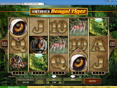 Untamed - Bengal Tiger Fun Slots by Microgaming with 5 Reel and 243 Line