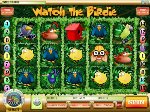 Watch the Birdie Fun Slots by Rival with 5 Reel and 15 Line